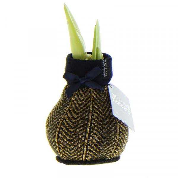 Wax Amaryllis Fashionz Elegant Or