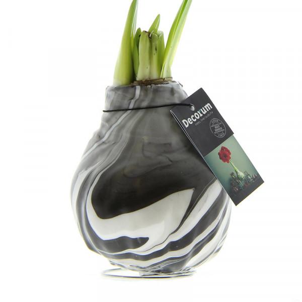 Wax Amaryllis XL Artooz Noir