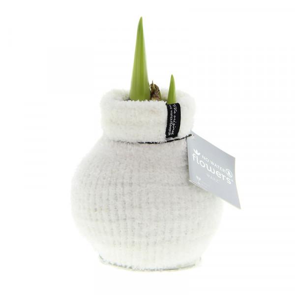 Wax Amaryllis Fashionz Cozy Fluffy Blanc