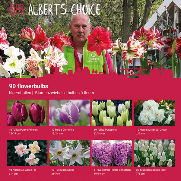 Collection de Bulbes d'ALBERT